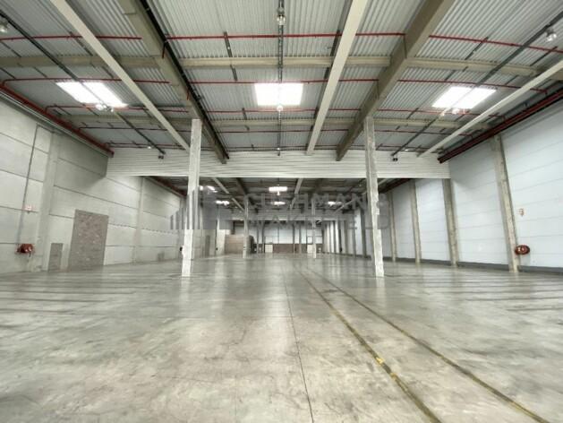 Location entrepôts / activité Strasbourg Cushman & Wakefield