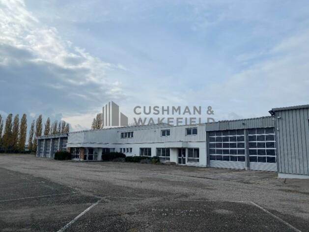 Location entrepôts / activité Bischheim Cushman & Wakefield